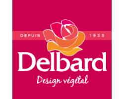 Кустовые розы (шрабы) Delbard (Дельбар), Франция