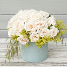 Розы флорибунда  Kordes (Кордес), Германия Grafin Elke zu Rantzau (Графиня Элке цу Рантзау), Kordes