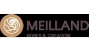 Кустовые розы (шрабы) Meilland (Мейян), Франция